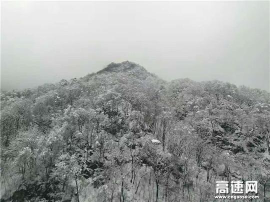 春雪自成景
