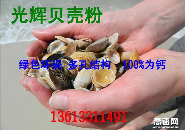 石家庄厂家直销贝壳粉生态涂料辅料 货源充足 价格优惠