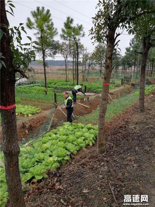 江西:安福公路分局开展路域环境专项整治行动