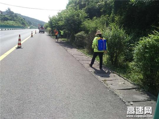 """陕西高速集团西略分公司西乡管理所""""三剂""""良方 做好夏季绿化物养管工作"""