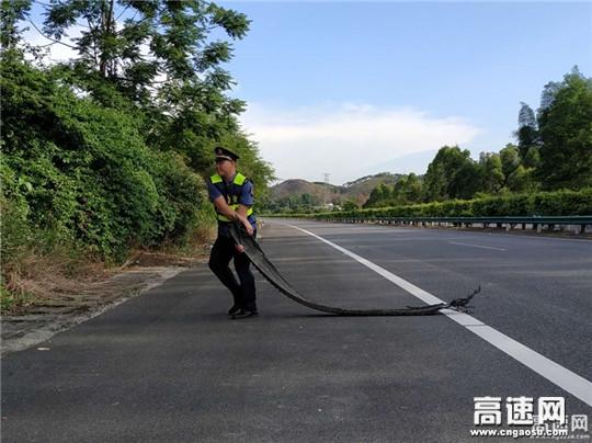 广西玉林高速处博白路政大队从小事做起认真做好履职工作