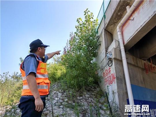 湖北高速路政黄黄支队第四大队宣教结合及时拆除违法搭设缆线