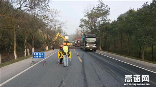 """江西:遂川公路分局全面清理""""问题""""行道树"""