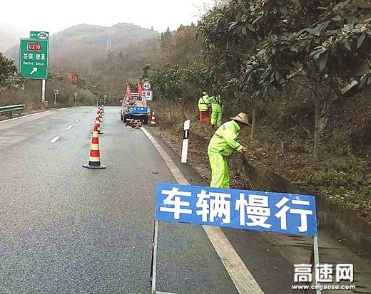 """陕西高速集团西乡管理所严把""""三关""""做好冬季绿化物养管工作"""