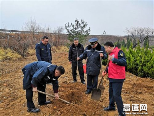 山东沈海高速栖霞北收费站开展植树节绿化活动