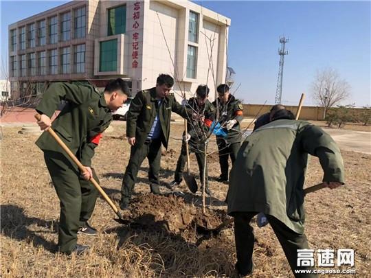 """河北沧廊(京沪)高速开发区收费站开展植树节""""植绿、护绿""""活动"""