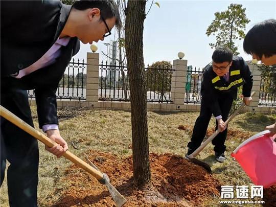 种一颗小树 绿一方净土