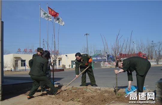 河北省沧州市姚官屯收费站开展植树绿化活动
