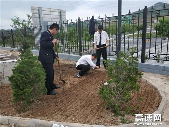 甘肃:宝天高速公路收费所街亭收费站充分站内闲置荒地种植瓜果蔬菜、整肃路域环境卫生