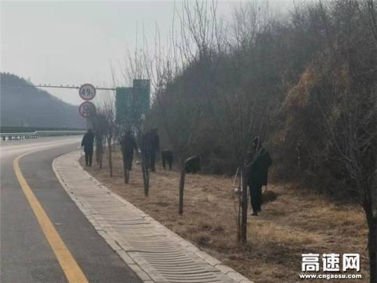 甘肃:庆城所太白主线收费站以点带面有序推进路域环境治理工作
