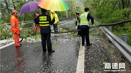 路域环境整治工作长效常治