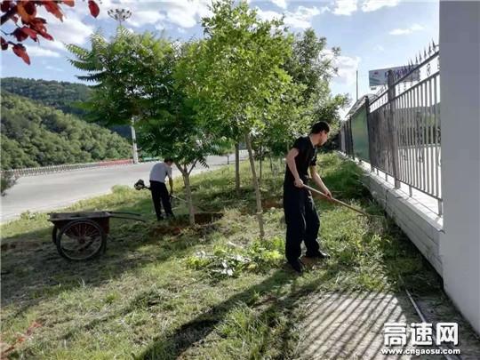 """甘肃:庆城所太白主线收费站开展""""杂草大清除""""活动"""