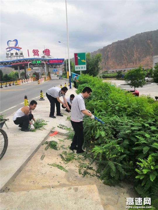 甘肃:甘谷高速公路收费所鸳鸯站将路域环境整治做成常态化