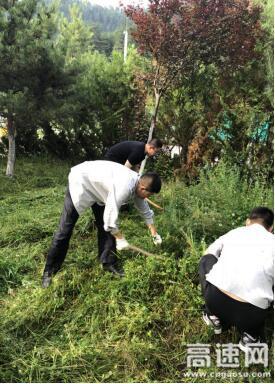 甘肃:宝天高速利桥收费站做好路域环境常态化治理
