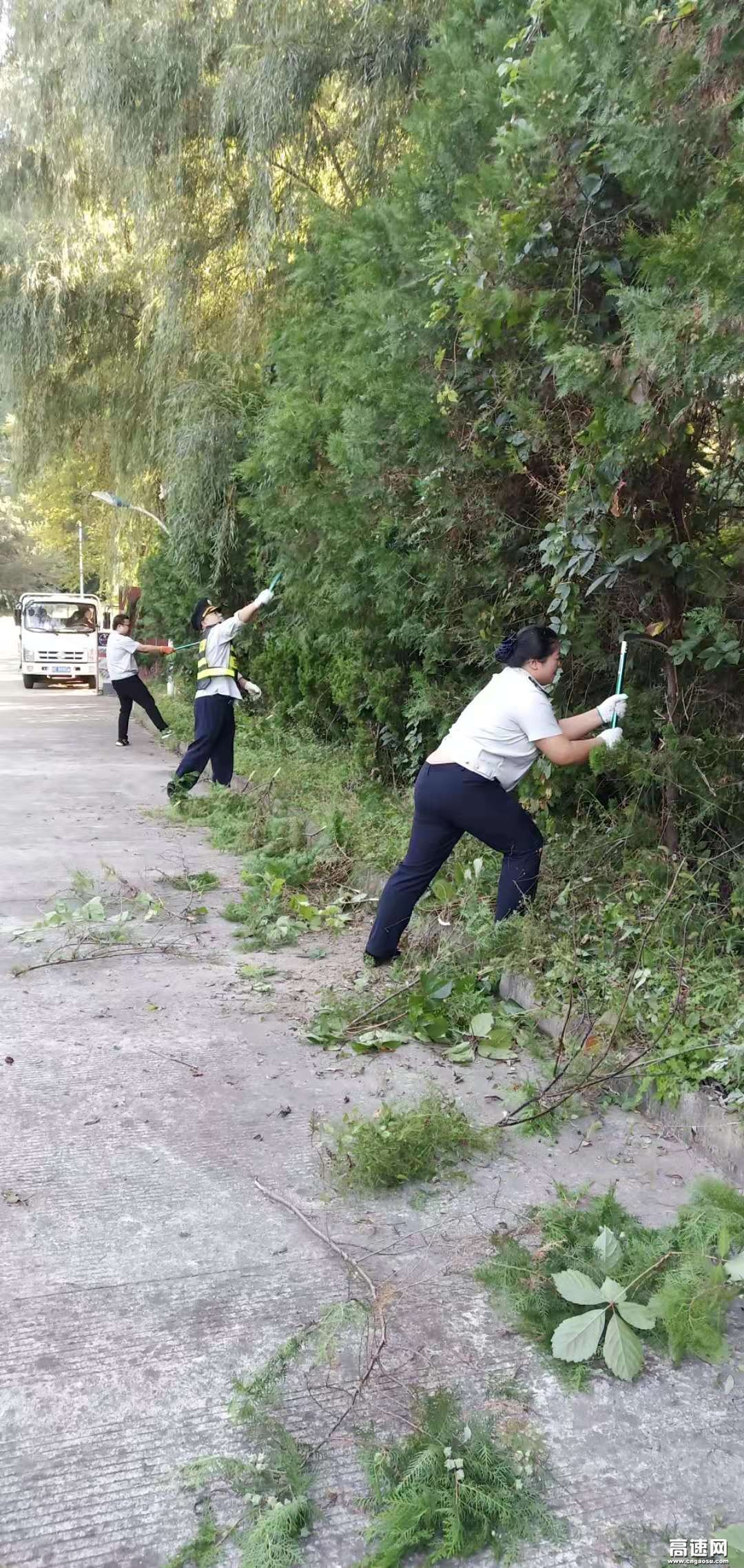甘肃:东岔匝道收费站积极做好路域环境整治工作