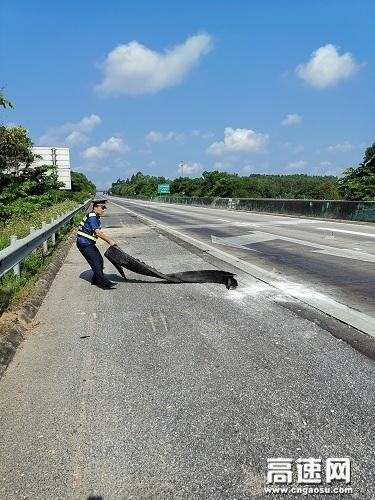 """广西玉林高速公路管理处合浦大队""""阳光路政""""一路同行,高速公路排阻排障护平安"""