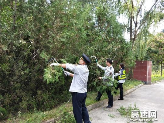 甘肃宝天高速东岔匝道收费站开展路域环境整治工作