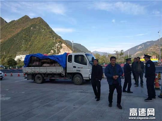 甘肃宝天所东岔主线站配合检疫部门处置无证明拉运仔猪车辆