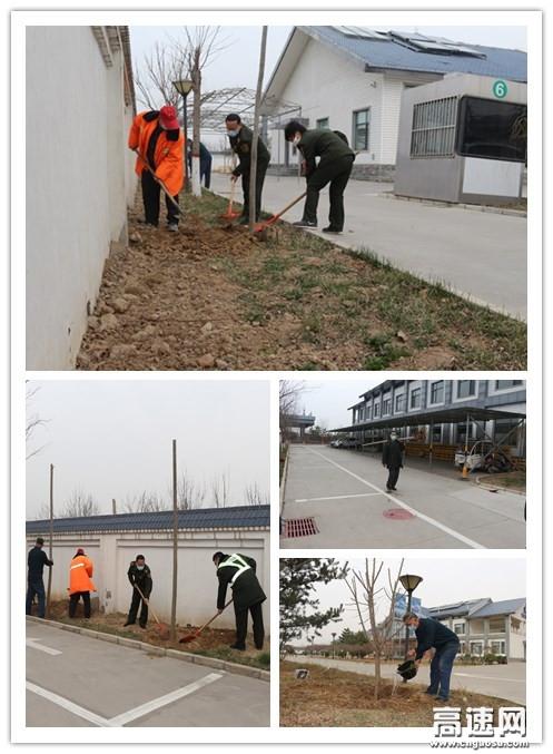 河北:栾城东收费站:义务植树 绿化站区