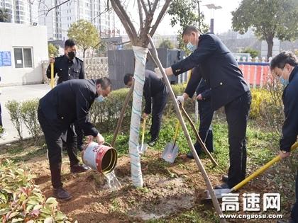 陕西交通集团商界分公司商南管理所组织开展植树活动
