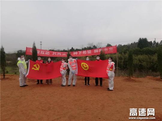 浙江顺畅养护衢州项目部参加植树节活动助力美丽公路建设