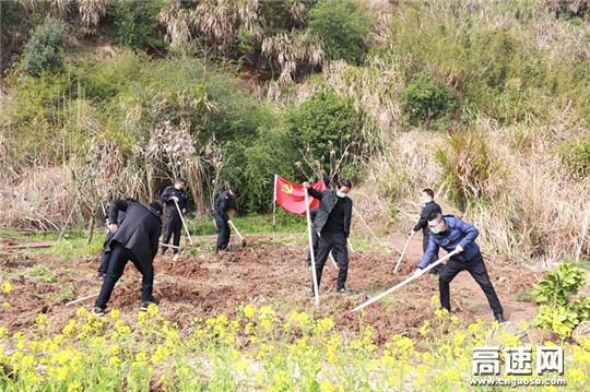 浙江顺畅养护浙东支部开展警企联合植树