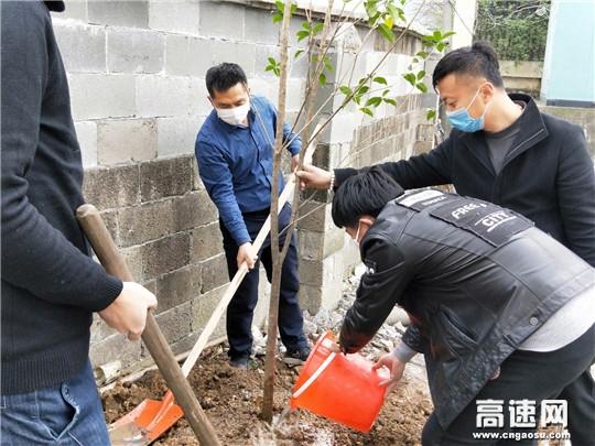 """浙江顺畅养护新天项目部开展""""播种一棵抗疫树,我为环境献点绿""""党团主题活动"""