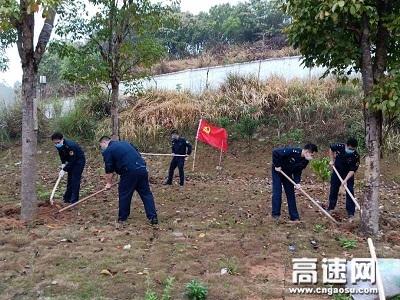 广西高速公路发展中心玉林分中心浦北大队党支部开展植树绿化主题党日活动