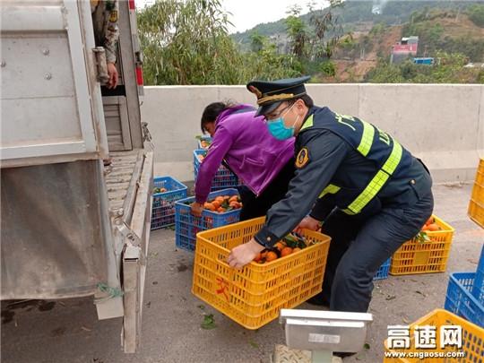广西高速柳州分中心东兰大队帮农民工兄弟搬柑橘,助其复产复工增收入