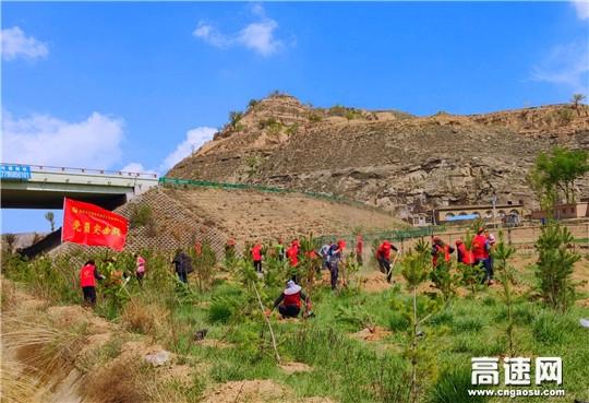 陕西交通建设集团吴靖分公司开展全民义务植树活动打造绿色生态文明长廊