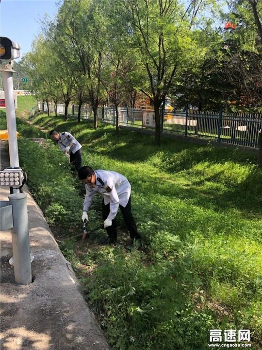甘肃宝天高速利桥收费站做好路域环境治理 喜迎伏羲文化节