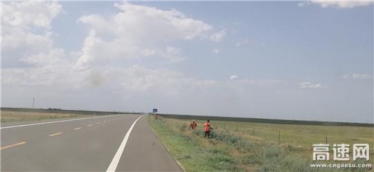 内蒙古自治区阿拉坦额莫勒公路养护管理所修剪路肩草确保道路安全畅通