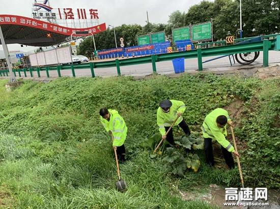 甘肃高速泾川东收费站组织开展防汛演练活动