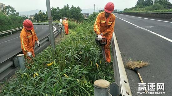 """大""""烤""""下浙江顺畅养护人用汗水奏响高速路上的每一抹绿色之歌"""