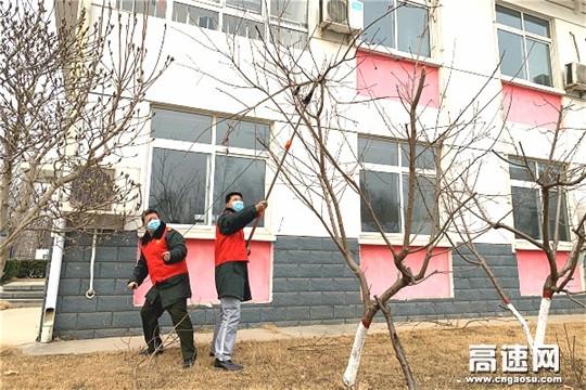 河北保沧公司高阳收费站修剪庭院美化站区