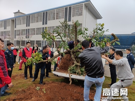 广西玉林高速公路平南大队党支部携手多部门开展植树活动
