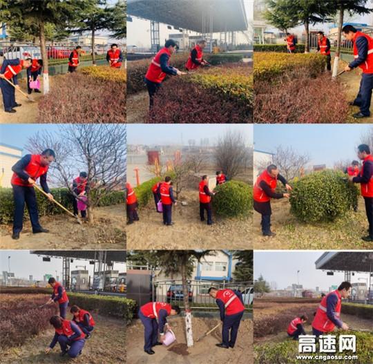 收费员化身园艺师 修剪绿植扮靓站区
