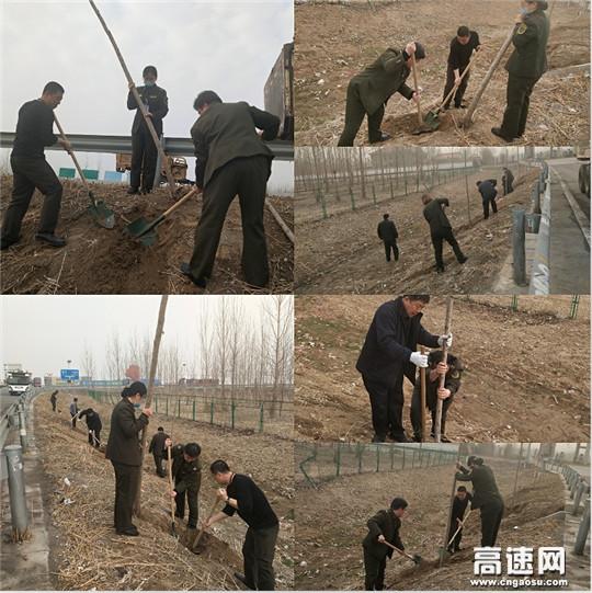 """河北沧州千童收费站开展""""守护绿意,拥抱春天""""植树节主题活动"""