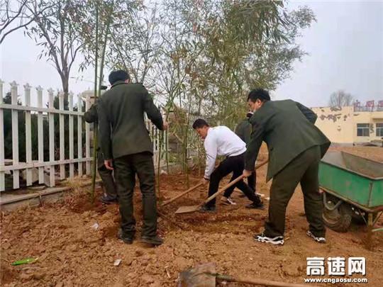 绿植应景 春风迎人 河北沧廊(京沪)高速开发区收费站植树节为站区增添生机