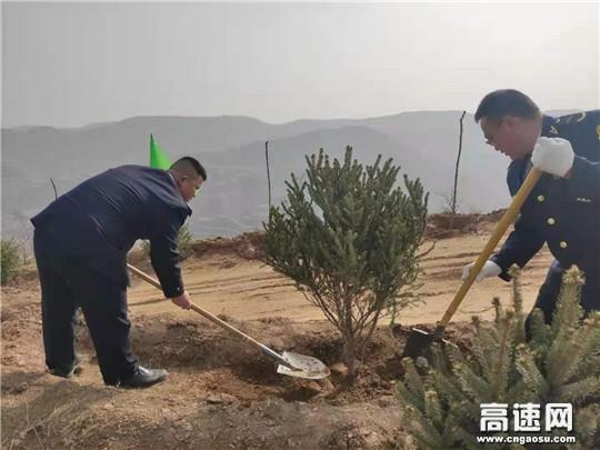 """甘肃高速泾川所罗汉洞收费站开展""""种一棵小树、绿一方净土""""植树活动"""