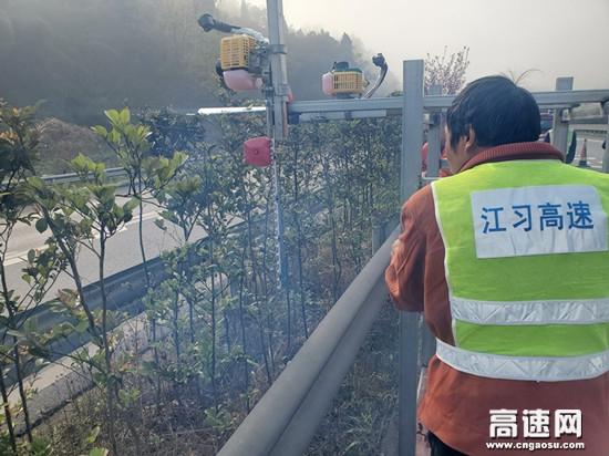 江习高速首台自主改造绿植顶侧修剪机投入使用