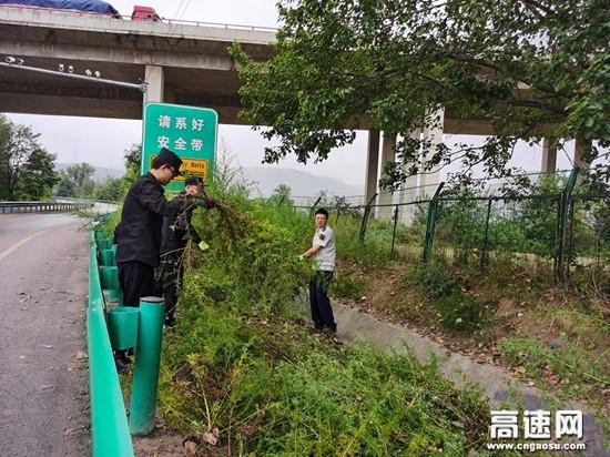 甘肃高速长庆桥收费站清理边沟杂草确保排水畅通防汛安全